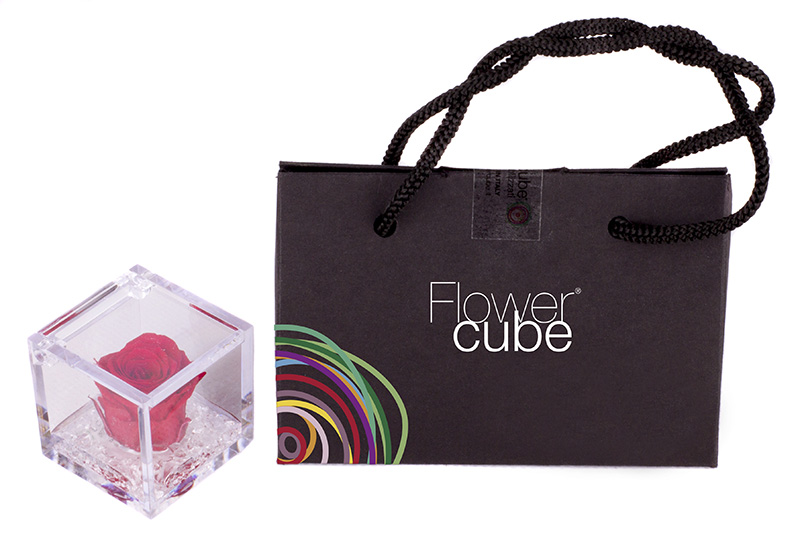 mini flowercube events 01